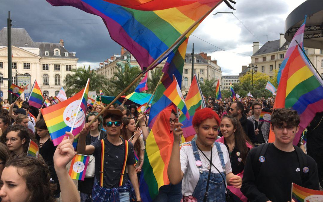 Luttons contre l'homophobie et la transphobie au lycée !